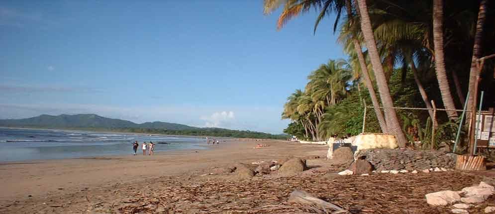 Playa Tamarindo Costa Rica Info   Hotels Restaurants Cabinas Apartment